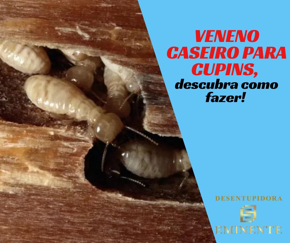 Veneno Caseiro Para Cupins, Descubra Como Fazer!